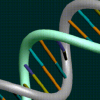 Thumbnail image for Genome Technology Explained, Part Three – What's the Big Deal?