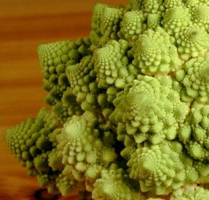 An up close perspective of romanesco.  Pretty amazing pattern if you ask me.